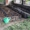Компания  БИОПЛЮС продает недорого  маточное поголовье  червя #1291393