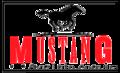 Джинсы Mustang. Размеры: от 30 до 38. Лот 10 ед., Объявление #1016929