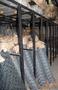 Сетка рабица,  сітка рабиця в асортименті,  ограждние,  забор,  огорожа