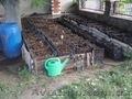 Компания  БИОПЛЮС продает недорого  маточное поголовье  червя